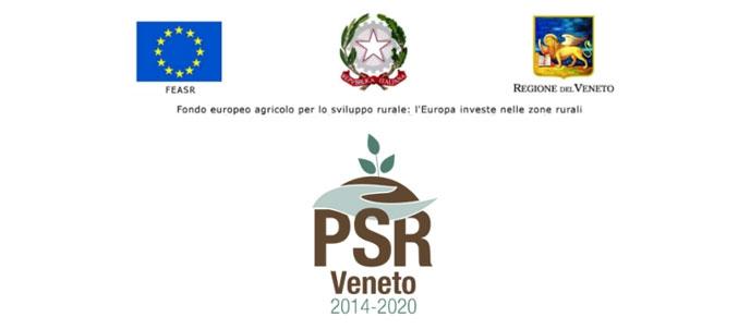 PSR Veneto